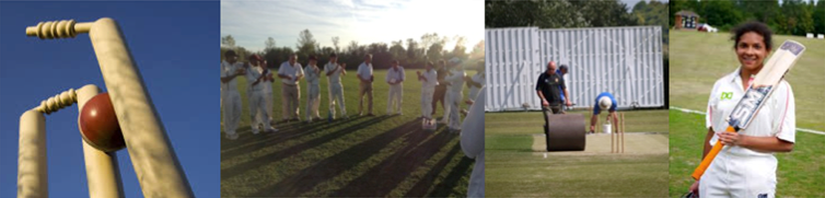 The club cricket charity front page banner